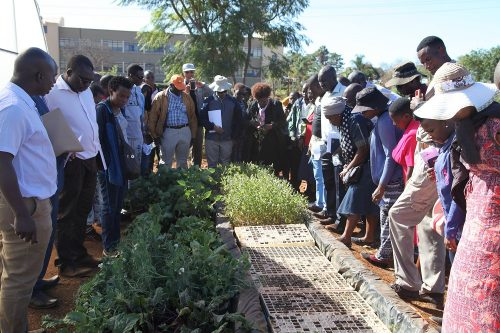 horticulture agronomy training (11)
