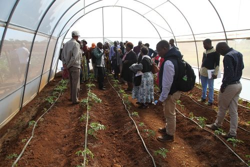 horticulture agronomy training (13)